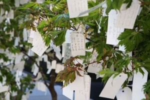 Original Photo Source: http://museumpublicity.com/2013/08/16/saint-louis-art-museum-presents-yoko-ono-wish-tree/